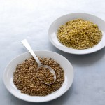 Latest Research: Eat More Fibre to Age Well